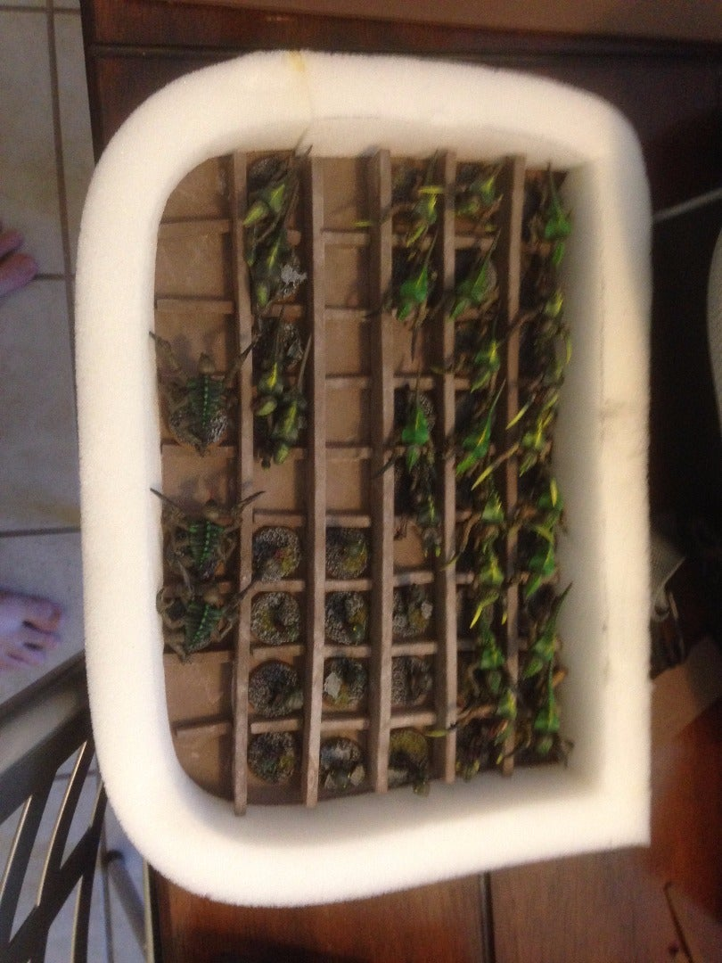 A: Permanent Trays