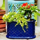 Fix a Broken Ceramic Planter With Epoxy
