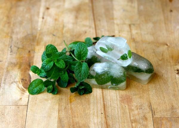 Freezing Fresh Herbs