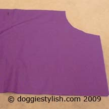 Cutting the Broadcloth Into a Coat