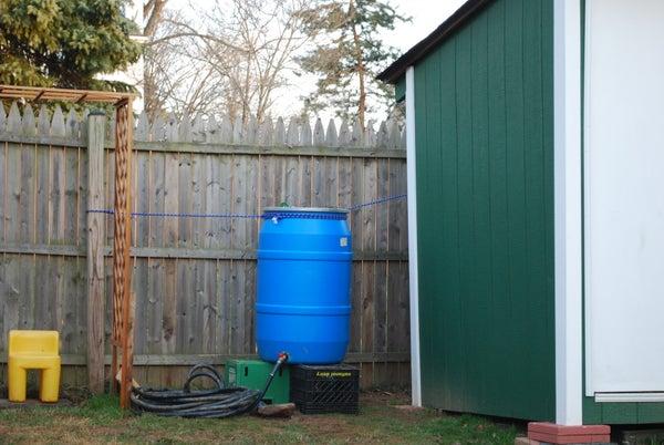 Backyard Rain Barrel