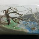 Jar Thingy
