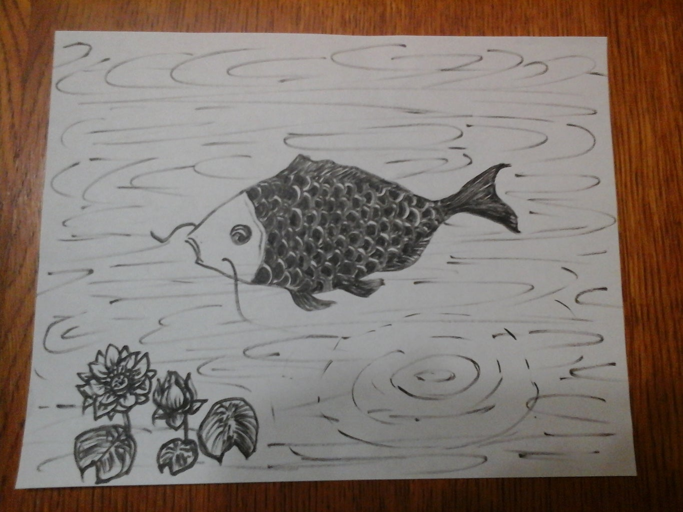 How to Draw a KOI