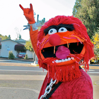 Muppet Animal Costume