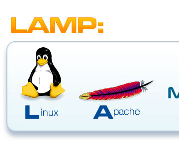 Super fast LAMP Install on CMD line Linux