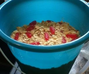 Bucket of Sand Treat