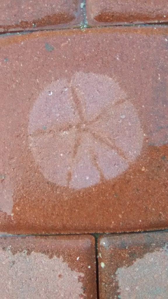 Remove Stencil, Splash Some Water and Enjoy!