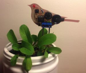 Water Me Bird, Sweet Reminder to Water My Plants