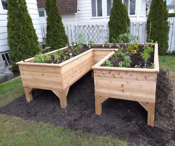 Save Your Back: U-shaped Cedar Raised Garden