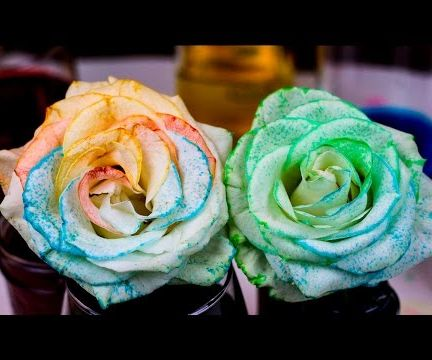 How to Tie Dye Flowers using Osmosis