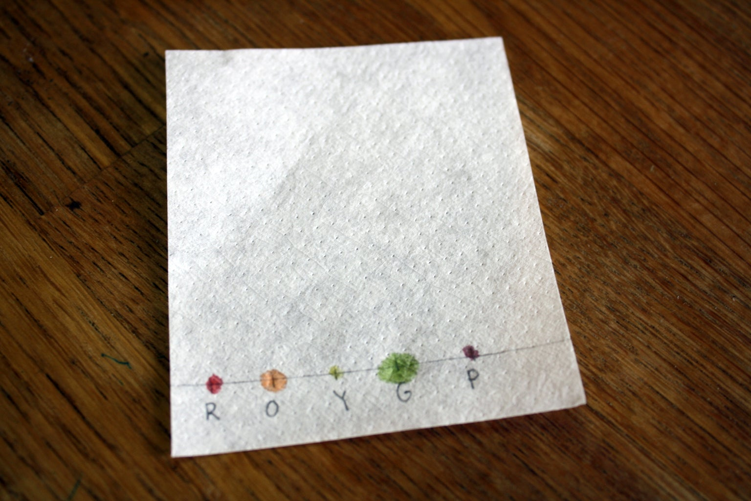 Place Colors on Coffee Filter