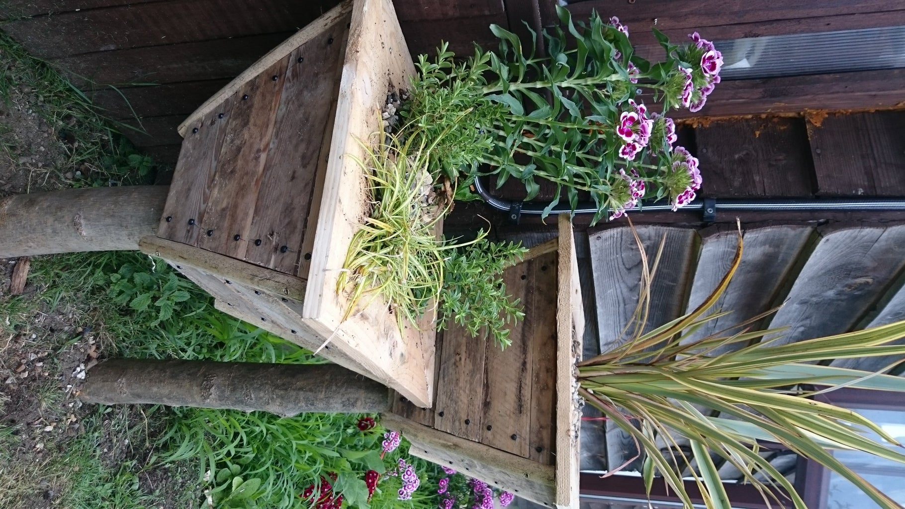 Filling Up the Planters
