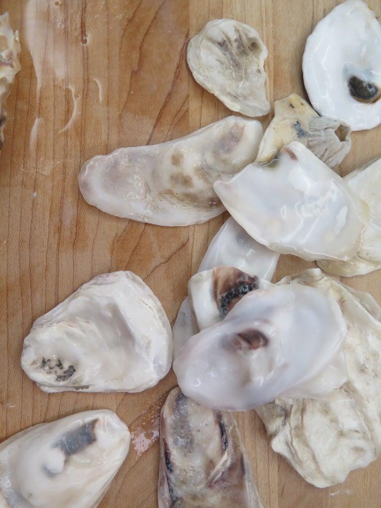 Prepare Shells
