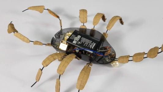 Add Control Circuits
