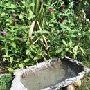 Nature Inspired Water Basin with Shapecrete