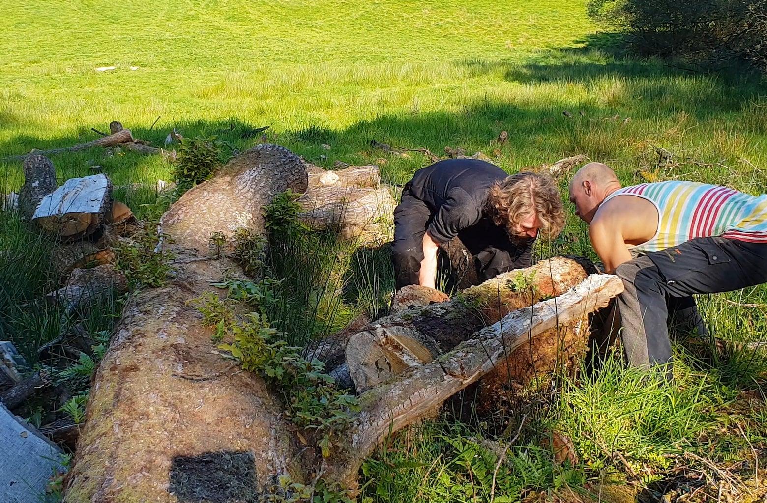 Choose Your Logs
