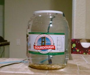 Pretzel Jar Aquarium