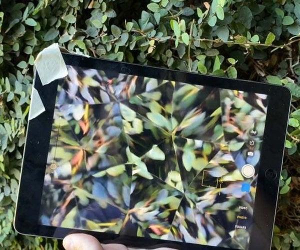 Plant Prisms & Cardboard Kaleidoscope