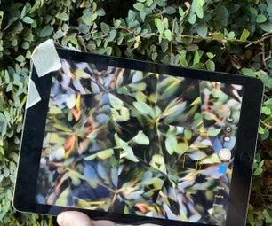 植物棱镜和纸板万花筒