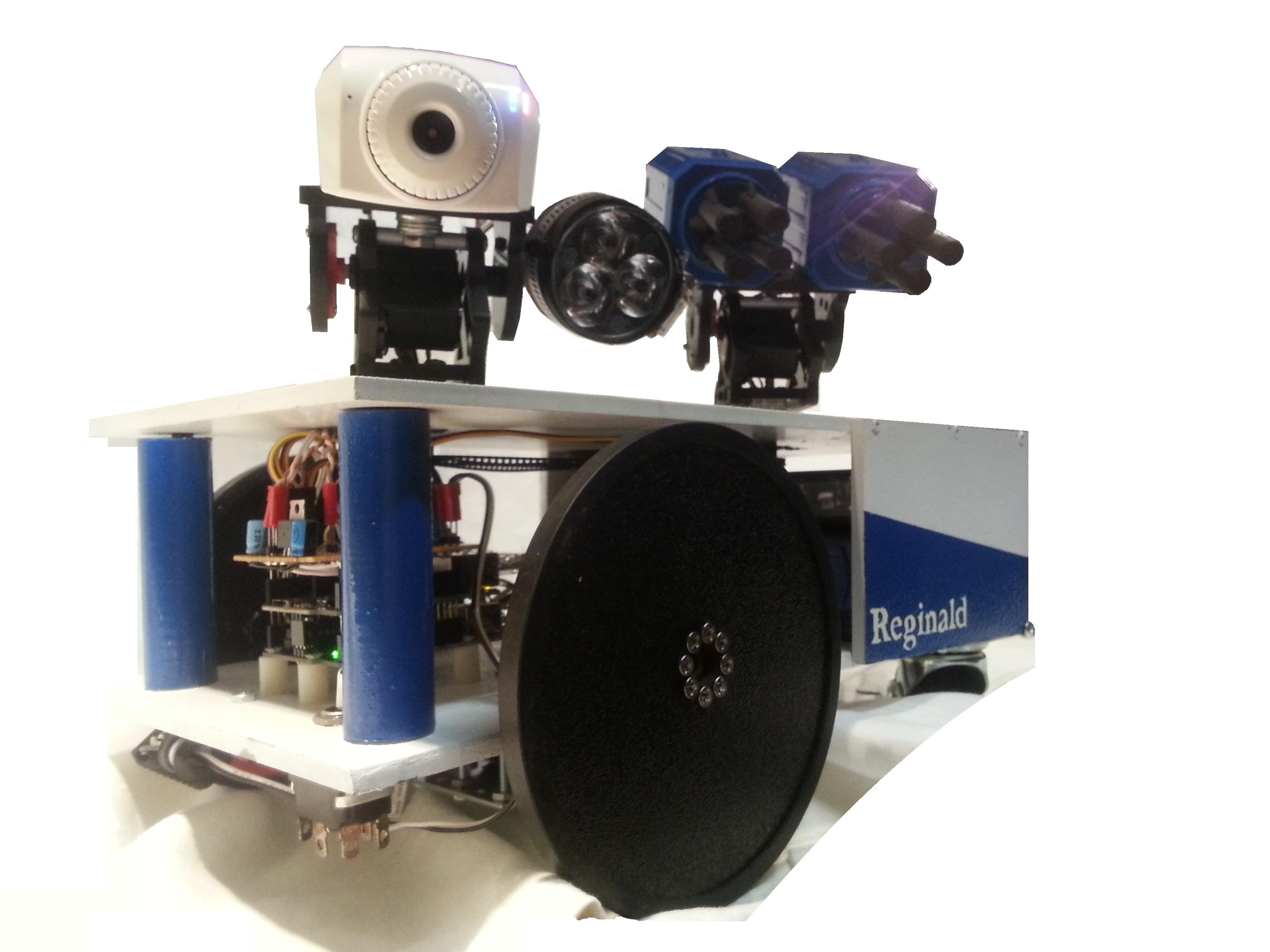 Reginald: a UDP surveillance bot; control via the Internet