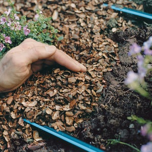 Cover the Tubing With Mulch