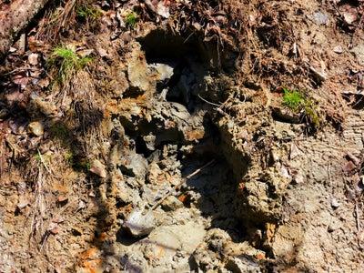 Locating Natural Clay