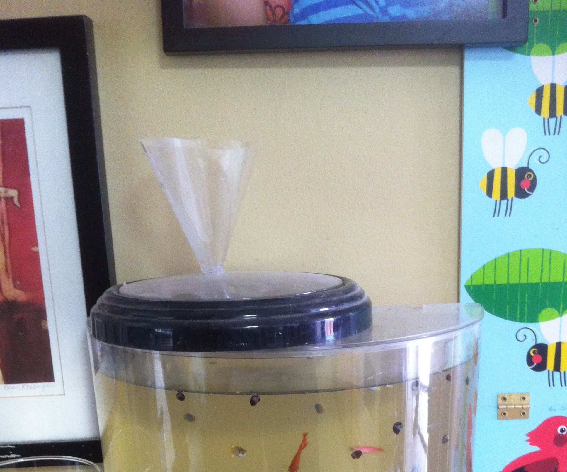 Turn a Clock Into an Automatic Fish Feeder