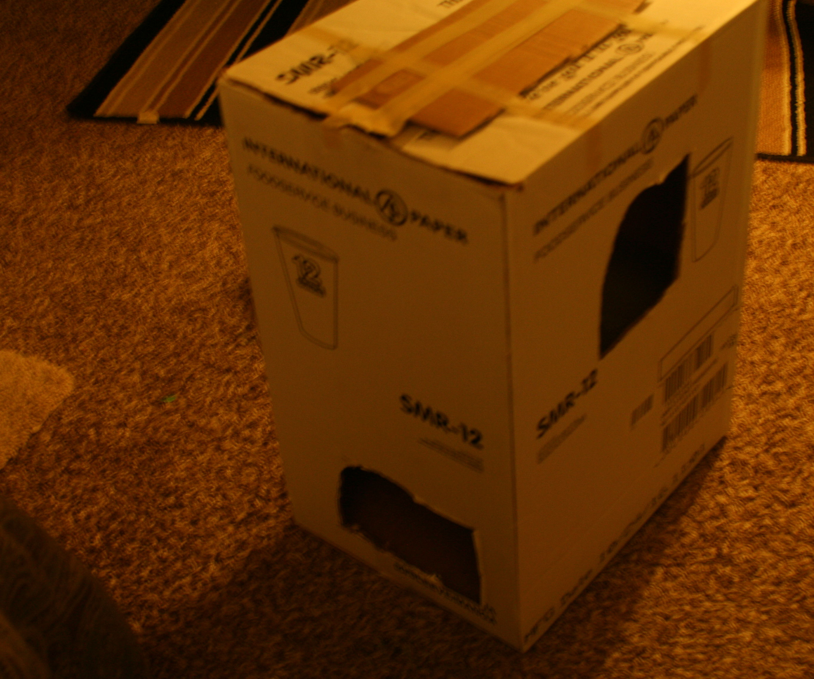 Imprompt cat house out of a carboard box