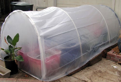Build an Easy 5 X 5 Home Greenhouse for Under $25
