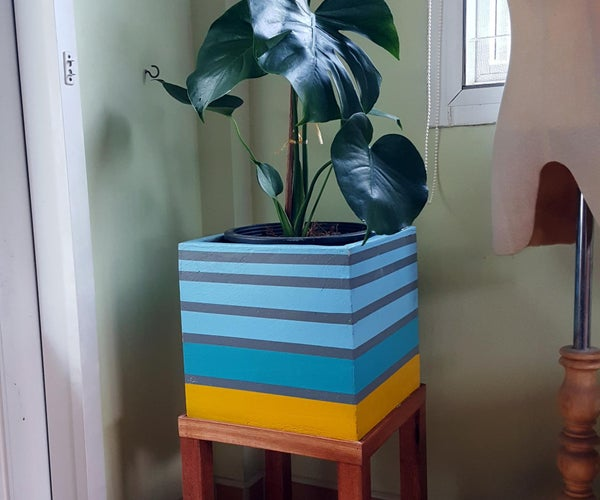 Monstera Giant Pot With Wooden Stand.
