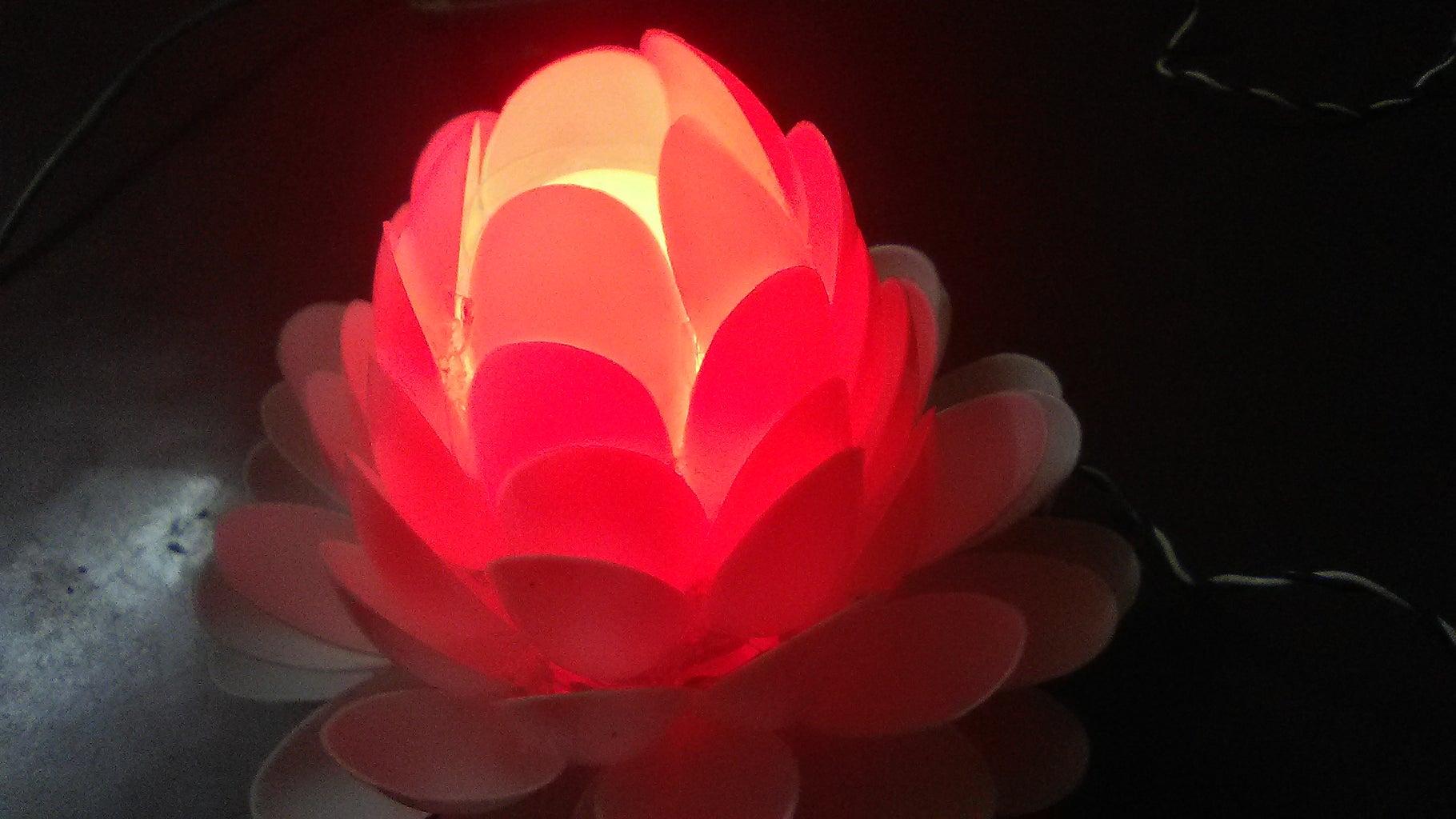 A Beautiful Lotus Flower Lamp