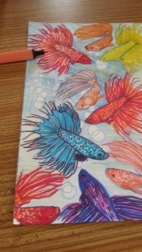 10th & 11th Fish