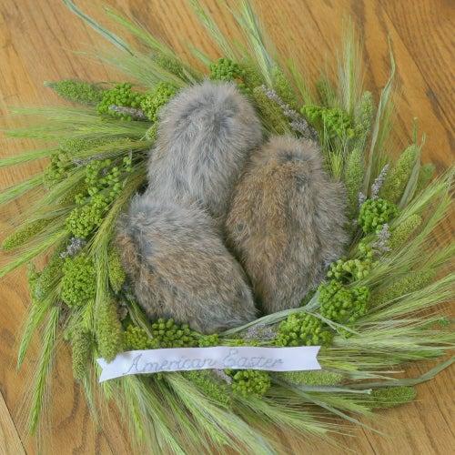 When Bunnies Lay Eggs | American Easter (Decorative Art)
