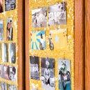 Photograph Display Board