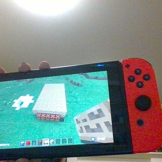 Minecraft 20 Questions Game