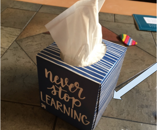 Hide Something in a Tissue Box.