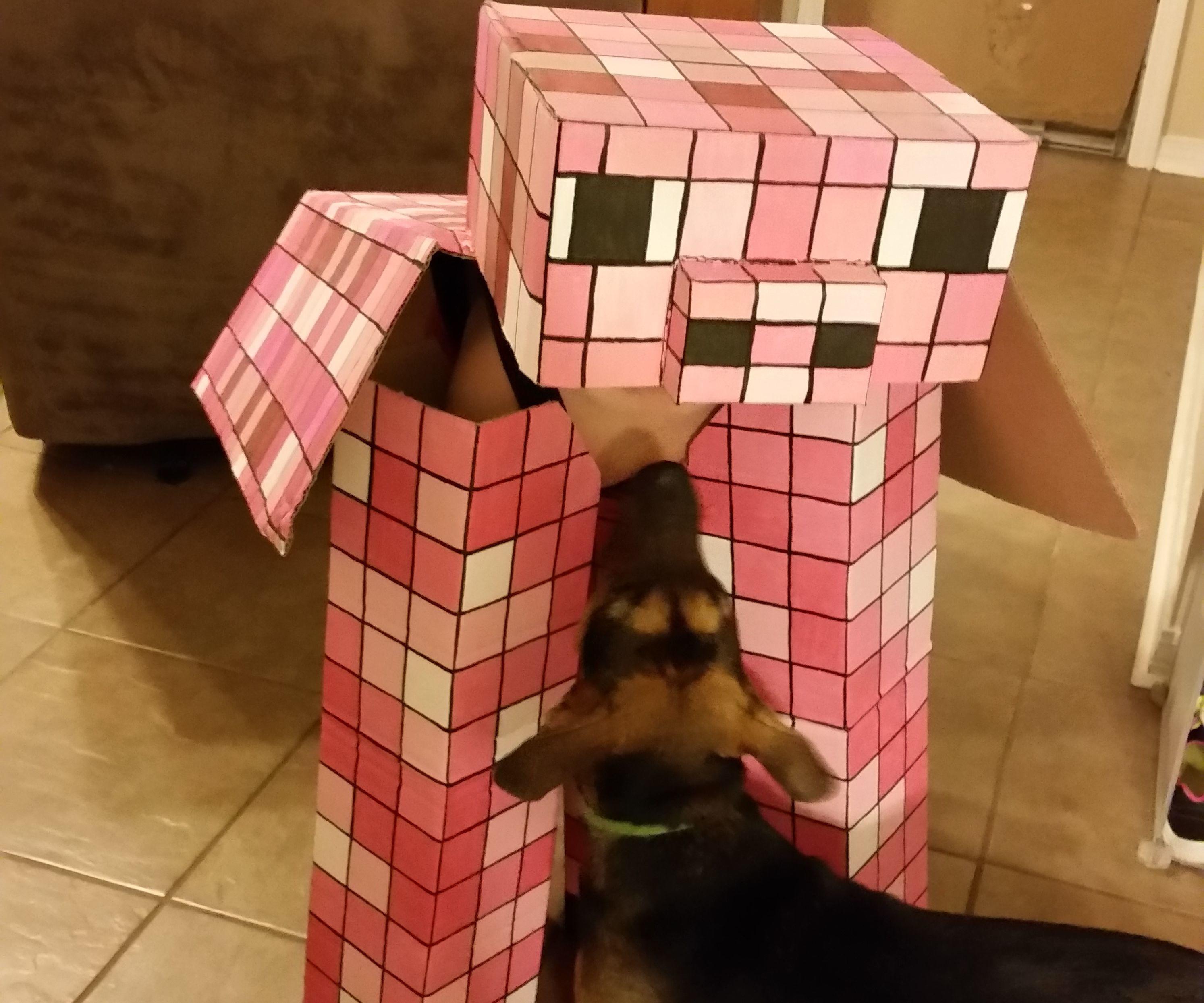 Mine Craft Pig Costume