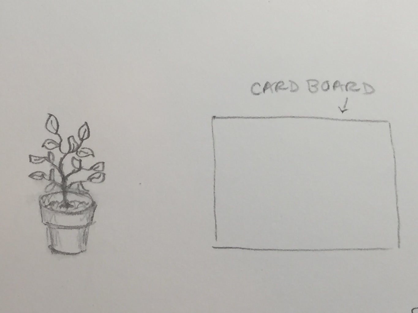 For Larger Plants...