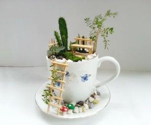 DIY Cup Garden