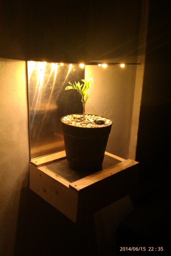 The Plant Shelf - Lights Upgrade