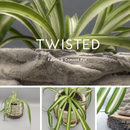 Super Simple Twisted Fabric Cement Pot