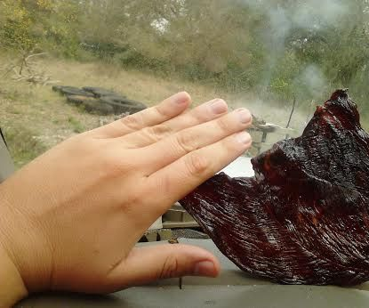 Dashboard Delight (IE; Make Beef Jerky In Your Car)