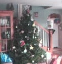 Treeduino - the Web Controlled Christmas Tree