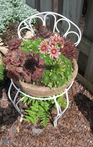 More Flower Ideas!