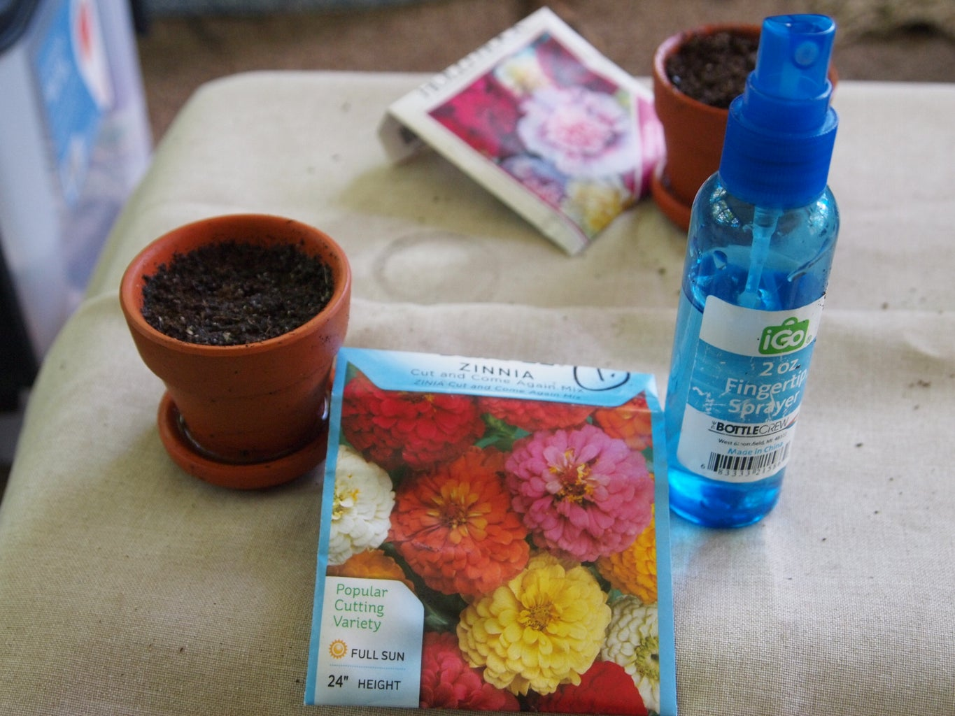 Planting the Germinated Seeds