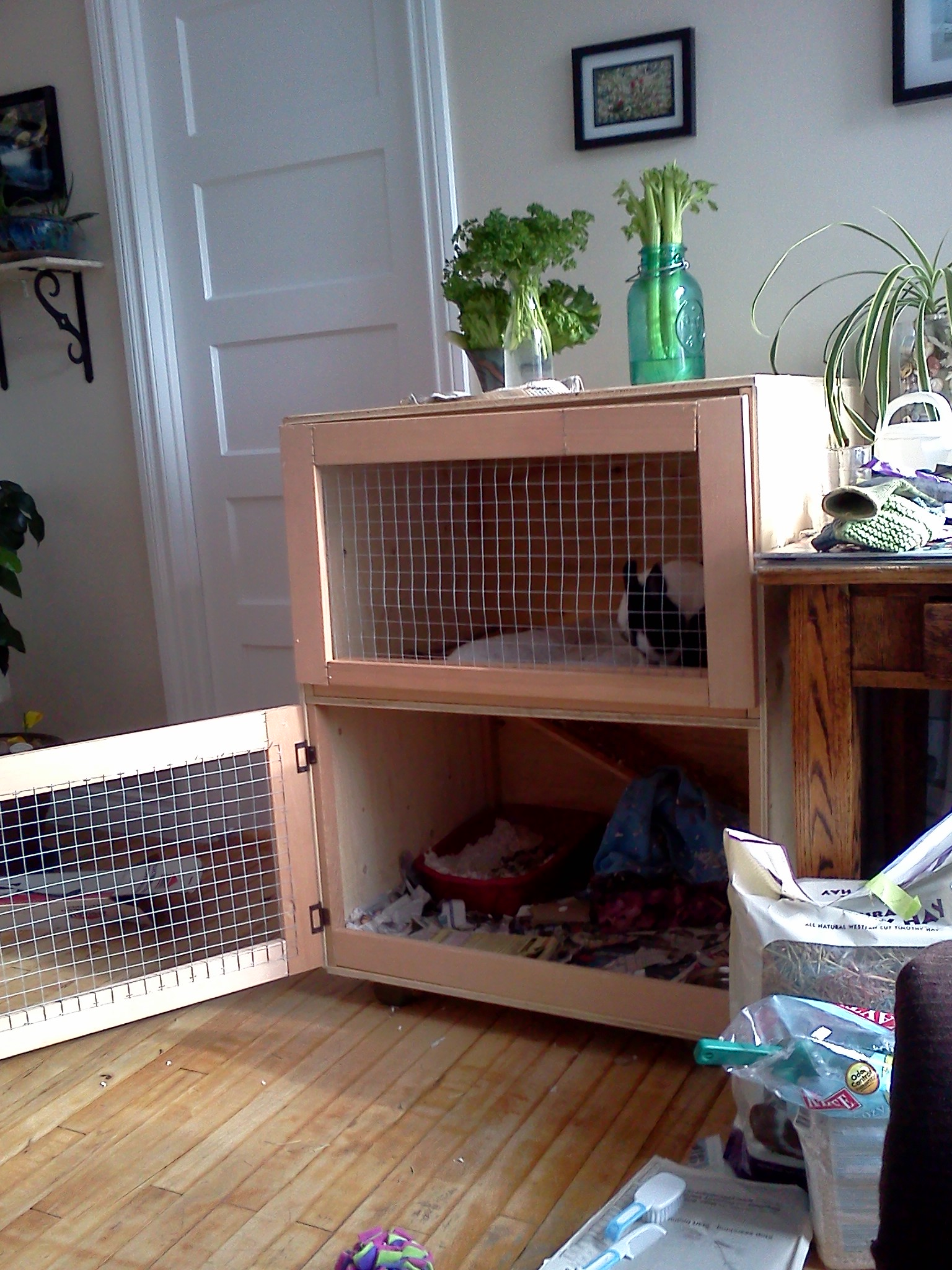 Build an indoor rabbit cage