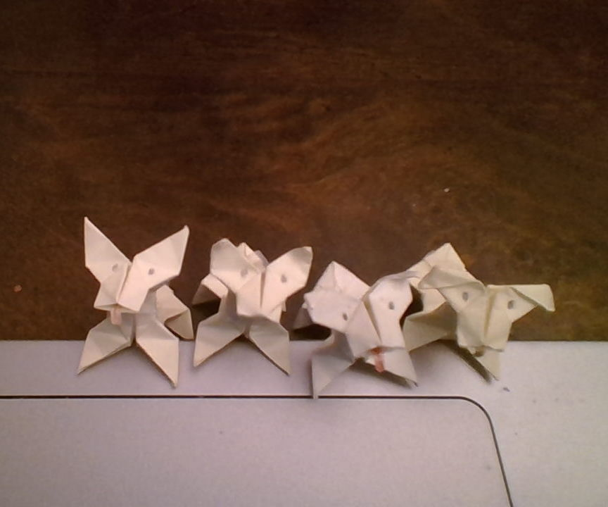 Origami Dog (3d) + All the Other Origami You Learn on the Way.