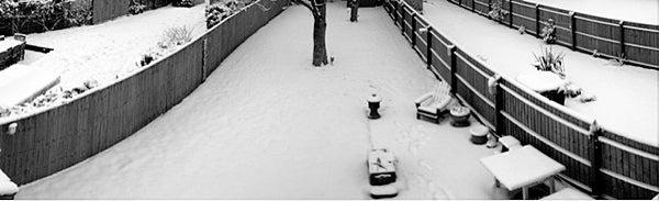 IPhone Photo Panoramas