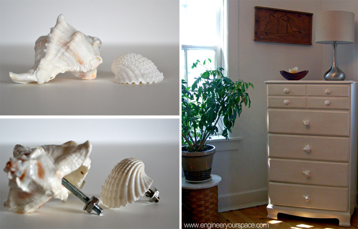 DIY decorative shell dresser knobs