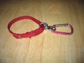 Tangle Free Dog Leash Holder